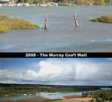 Save the Murray by Leeo