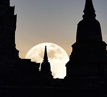 Moon Rise by Dave Lloyd