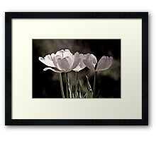 Love is a Tulip Framed Print