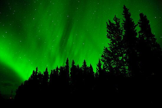 September Auroras #3 by peaceofthenorth