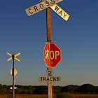 Railway crossing at Ooldea in the late afternoon sun by Wayne England