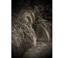 """HILLSIDE GEM"" Photographic Print"
