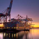 Hamburg Shipping by Rotschopf