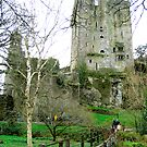 Blarney Castle, Ireland by valerieparent