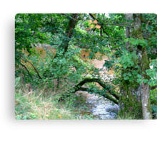 River Valley - The River Bank Canvas Print
