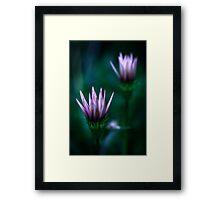 Colour Of Life XVI [Print & iPad Case] Framed Print