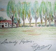 lombardy poplars & farmhouse by Rosa  D'Alessio