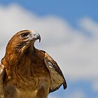 Look To The Skies by Gethin