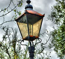 Lamp Post by Catherine Hamilton-Veal  ©