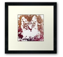 White kitty Framed Print