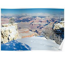 Canyon View Poster