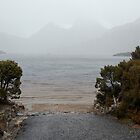 'Dove Lake Under a Blanket of Mist' by cradlemountain
