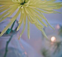 Dahlia Flower Still Life in Yellow by Elizabeth Thomas