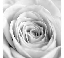 White I Photographic Print