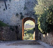 Archway to the Vineyards by phil decocco