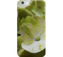 Fresh Green iPhone Case/Skin