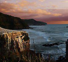 Muriwai by photohunter