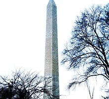 Washington Monument by Kimberly Miller