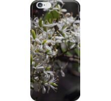 White young Microphylla clematis bush flowers DCT 201501071418 iPhone Case/Skin