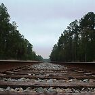 Down the Tracks by Southerngurl