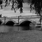 Ross Bridge, Tasmania by Tim O'Neil