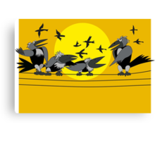 Funny birds Canvas Print