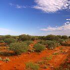 Red Earth Desert by Wayne England