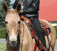 Palomino Mule by PrairieRose