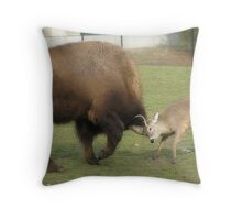 Anything you can do, I can do better! Throw Pillow