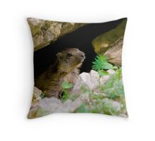 Cute Marmot Throw Pillow