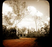 Outback Track by Jules Campbell