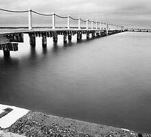Swim by Footprint Photography