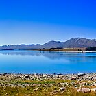 Lake Tekapo 2 by Janine  Hewlett