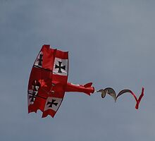 The Red Baron Over Bondi Beach, Australia 2010 by muz2142