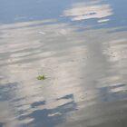 Mirror to the Sky by yankeegrl99