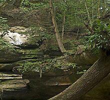 Big Rocks by Gaby Swanson  Photography