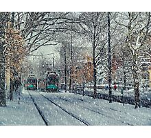 Never ending winter. Brookline, MA Photographic Print