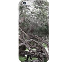 anarchy of the bush iPhone Case/Skin