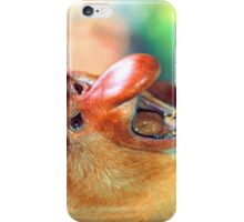 The proboscis monkey iPhone Case/Skin