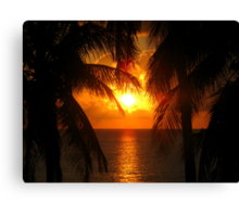 Palm Tree Silhouette, Sunset Canvas Print