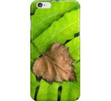 Old and New Leaf Abstract Art iPhone Case/Skin
