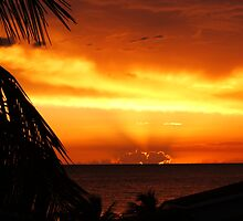 Caribbean Sunset by Honor Kyne