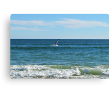 To The Sea!  Canvas Print