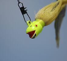Here fishy fishy!! by aegiis