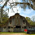 St. Francisville Barn by Bonnie T.  Barry