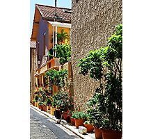 Are we in Provence Yet? Yes We Are! Photographic Print