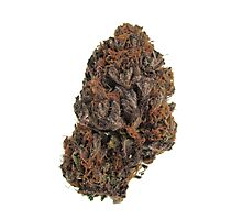 Purple Kush Photographic Print