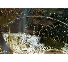 Metamorphosis Photographic Print
