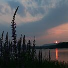 SUSQUEHANNA SUNSET AT DAUPHIN by Lori Deiter