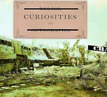 Curiosities and Chaos by tiffanysaffle
